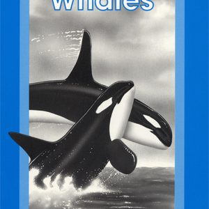Children's Book on Whales for Scott Foresman/Addison Wesley